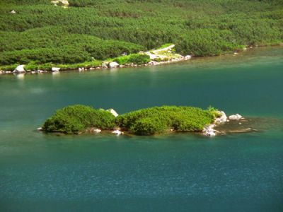Wyspa na stawie