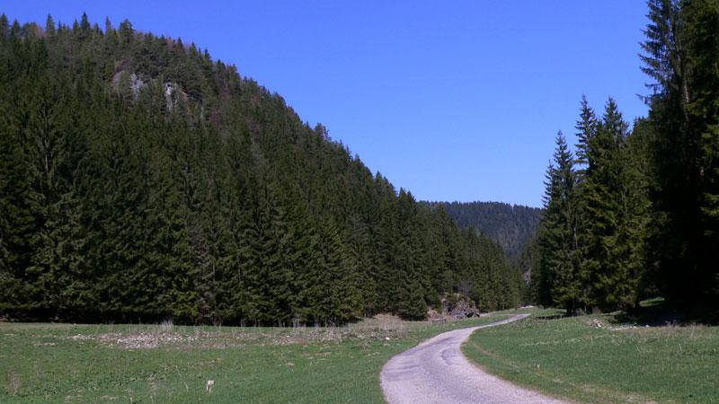 Szlak prowadzi taką o doliną