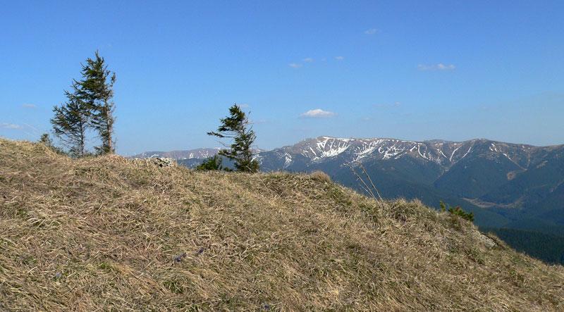 Pod szczytem Salatina - widok na główną grań Niżnych