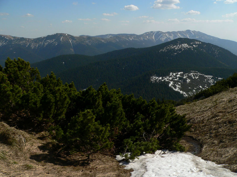 Tlsta (1554 m) i Wielka Chochula (1758 m, drugi plan) na zachodnim krańcu głównej grani Niżnych Tatr.