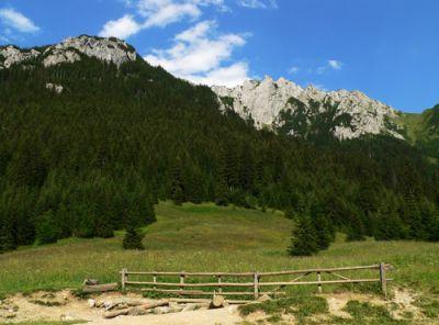 Widoki z doliny Kościeliskiej
